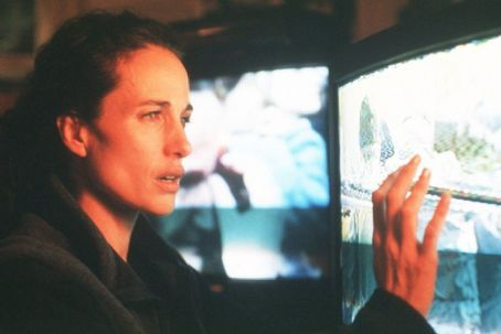 Harrison's Flowers Andie MacDowell as Sarah in Universal Focus' Harrison's Flowers - 2002