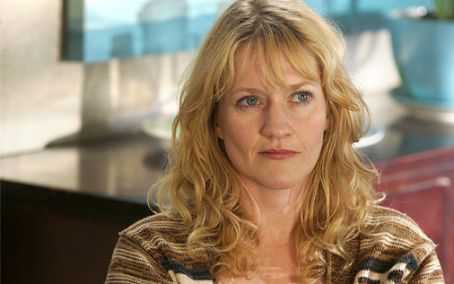 Paula Malcomson  as Jerri on 'John from Cincinnati'