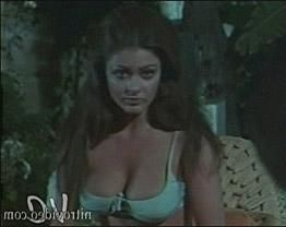 Cynthia Myers  Collection