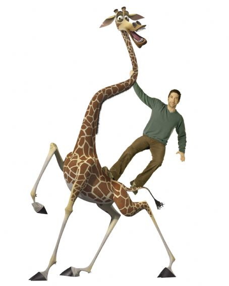 "David Schwimmer - DAVID SCHWIMMER voices Melman the giraffe in DreamWorks' ""Madagascar: Escape 2 Africa."" Photo credit: Courtesy of DreamWorks Animation SKG. Madagascar: Escape 2 Africa ™ & © 2008 DreamWorks Animation L.L.C. All Rights Reserved."