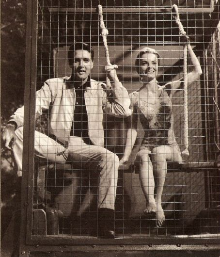 Joan Freeman Elvis With