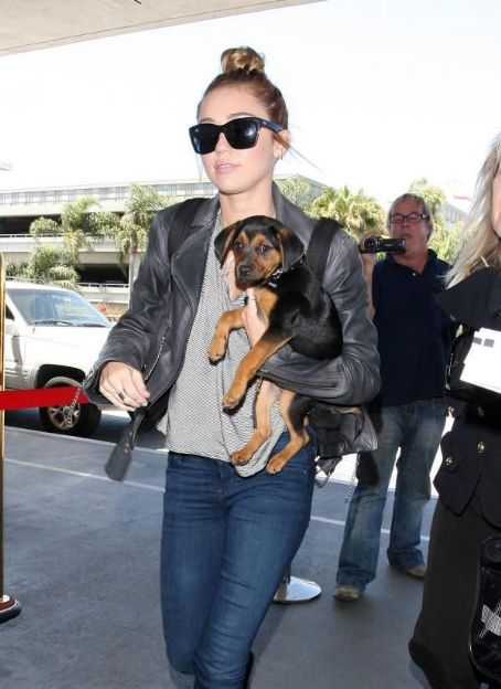 Miley Cyrus was spotted arriving at Los Angeles International Airport this afternoon, May 14, in Los Angeles