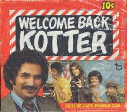 Welcome Back, Kotter  (1975)