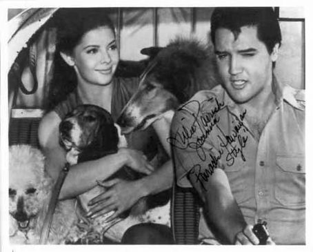 Julie Parrish , Elvis &  Hound Dogs
